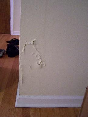 wallcrack.jpg